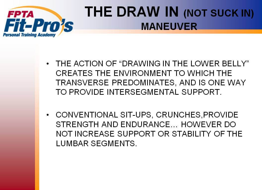 Lets learn pin point facts regarding the spine fit pros follow the slides slowly make notes so we can discuss as we get closer to your graduation certification 1betcityfo Gallery
